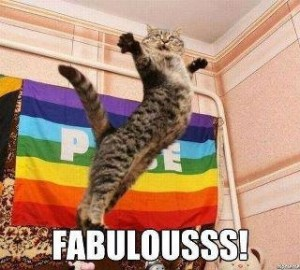 Fabulous Kitty